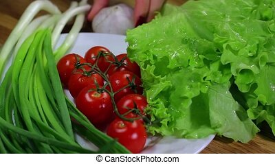 vegetables from garden - fresh bright vegetables collected...