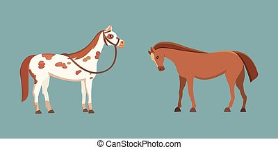 Cute horses in various poses vector design. Cartoon farm wild isolated horse and different silhouette of flat pony