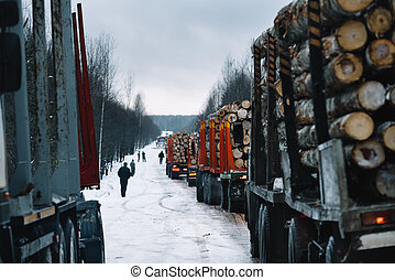 Loaded long vehicles on winter road among forest - Loaded...
