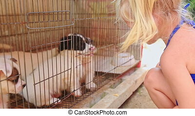 Little Blond Girl with Pigtail Watches Puppies in Cage -...