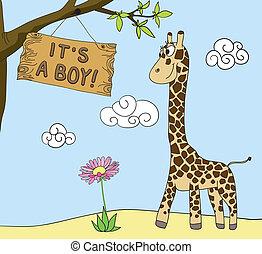 boy arrival