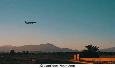 Passenger Plane in the Sky Landing on the Background of Mountains and Palm Trees in Egypt.