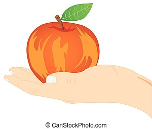 Red apple on palm