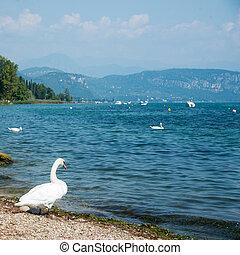 shore of Lake Garda with Alps mountain, Italy