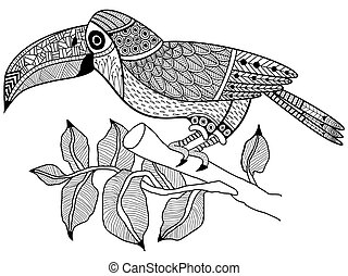 Toucan bird on a branch Coloring book vector for adults -...