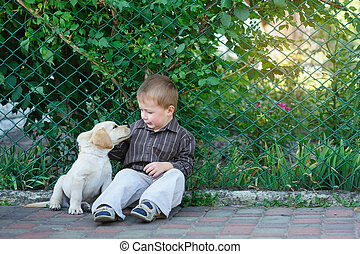 little boy playing with a puppy labrador in the park.