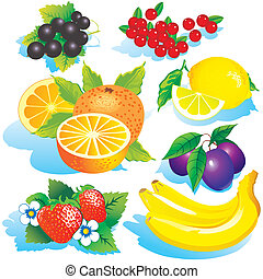 Fruits - Various juicy fruits on a white background Vector...