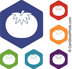 Tomato icons set rhombus in different colors isolated on...