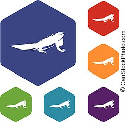 Iguana icons set rhombus in different colors isolated on...