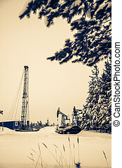 Pump jack and oil rig situated in forest. - Pump jack and...