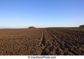 plow soil and hedgerow - newly plowed soil in a hilltop...