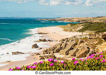 Landscape of Porto Covo beach, Portugal at sunny day
