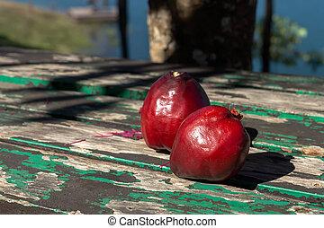 pomerac, maçã, madeira, Malaio