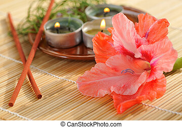 aromatherapy - aromatic burn candles with gladiolus flower...