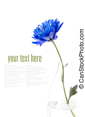 blue flower over white  (with easy removable sample text)