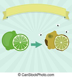 Rotten lime or lemon with flies and fresh lime. Blank ribbon...