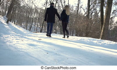 Man and Woman Walks Winter Park - Young attractive couple...