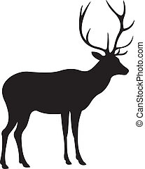 Deer vector. To see similar, please VISIT MY PORTFOLIO