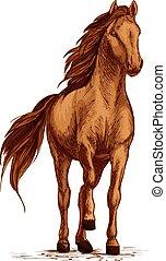 Arabian brown horse stomping hoof vector sketch - Horse...
