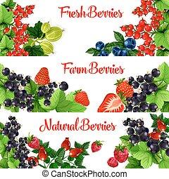 Fresh berries vector banners set