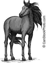 Wild black horse standing vector sketch