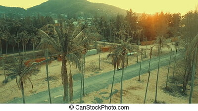 Beautiful sunset and palm trees - Aerial view of beautiful...