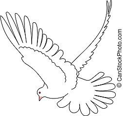 gołębica, Wektor