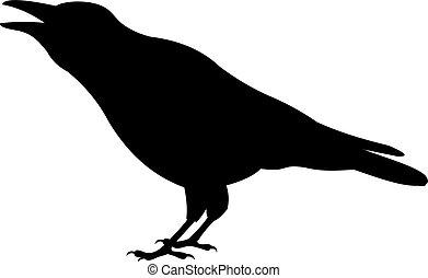 vecteur, corbeau