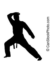 karate  martial arts man silhouette. Karate training