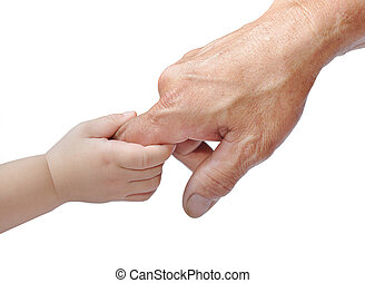 hand - A child\'s hand holding an adult\'s finger