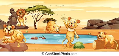 Lions drinking water from the pond illustration