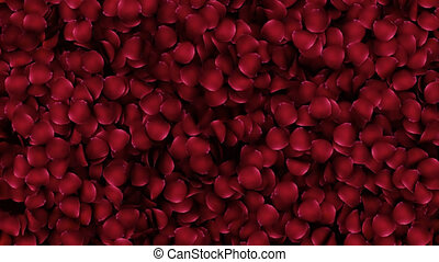 Animation petals of roses in a heart with alpha channel