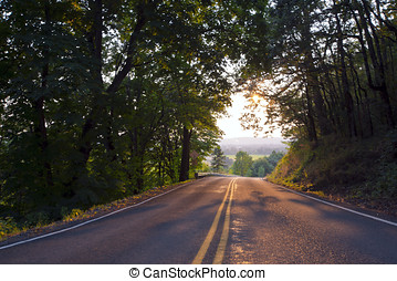 road to beautiful landscape in sunlight in shadows of trees