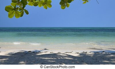 Tilt up of the peaceful tropical beach - Camera tilt up of...