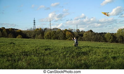 Girl in a field with a kite.