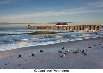 Naples Florida pier at sunrise - Sunrise at the beach by the...