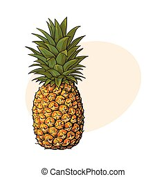 Whole, unpeeled, uncut pineapple, isolated sketch style...