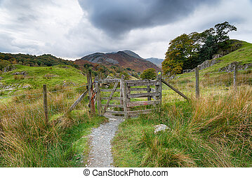 Footpath to the Mountains - A grey overcast day on a...