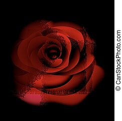 red abstract rose - black background and red-colored fantasy...
