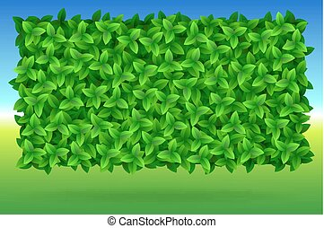 Summer, bright background of green leaves, vector image...