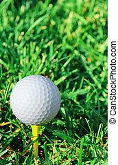 Vertical of golf ball and grass