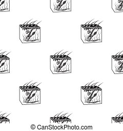 Skin icon in black style isolated on white background....
