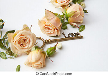 Key with rose petals - key and beige rose buds on a white...