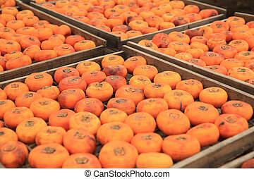 drying persimmon fruits