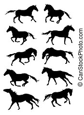 Set of vector horses silouettes - illustration with horse...
