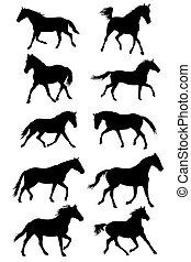 Set of vector black trotting horses silouettes on white...