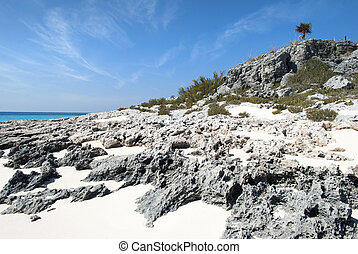 Bahamian Rocky Beach - The view of the rocky beach on...