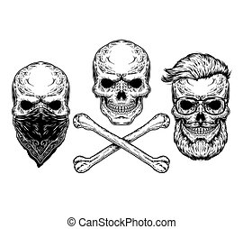 illustration of a skull and crossbones - Collection of...