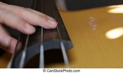 Contra bass player closeup - A man Plays the double bass....