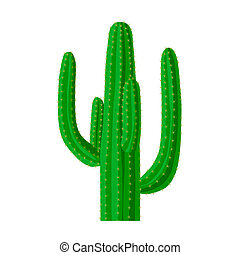 Mexican cactus icon in cartoon style isolated on white...